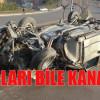 BURUNLARI BİLE KANAMADI!