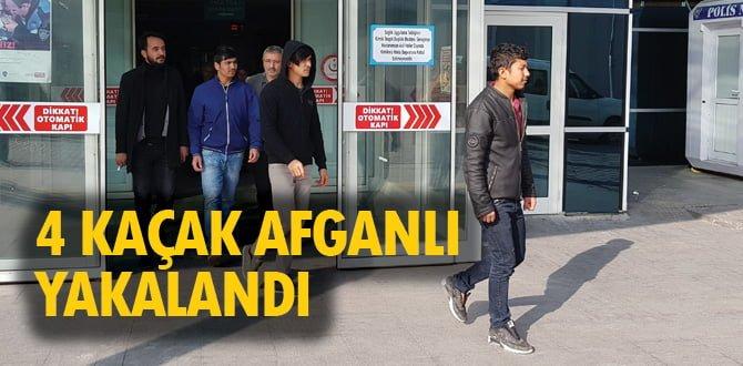 Karabük'te 4 kaçak Afganlı yakalandı