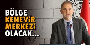 """Meşe: """"Samsun, Amasya ve Kastamonu kenevir tohum üretim merkezi olacak"""""""