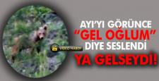 """AYI'YI GÖRÜNCE """"GEL OĞLUM"""" DİYE SESLENDİ…"""