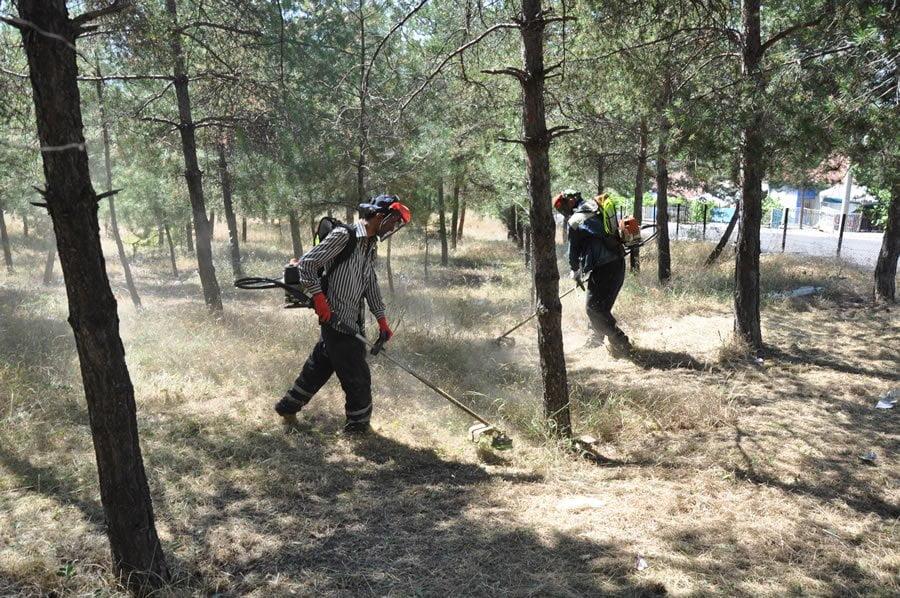 Yangın Riskine Karşı Kuruyan Otlar Kesiliyor